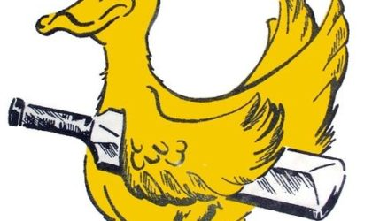 Do You Know The Different Kinds Of DUCKS In Cricket? Find Out Here…