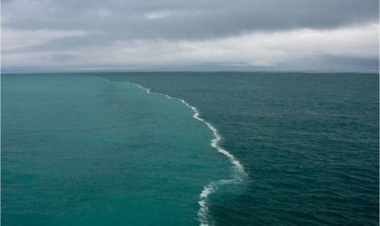 Do You Know About The Mystery Of The Astonishing Gulf Of Alaska?