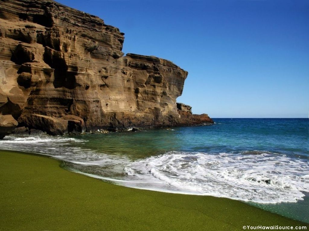 grassy olive green beach