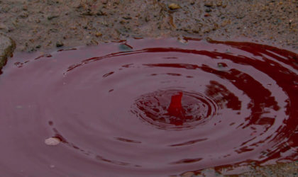 Deciphering The Enigma Of The Blood Rain In Kerala
