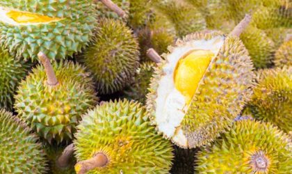 Durian – A Fruit With Deadly Smell And Awesome Taste