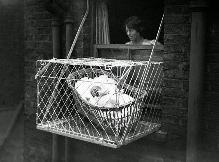 baby outdoor cages--Procaffenation
