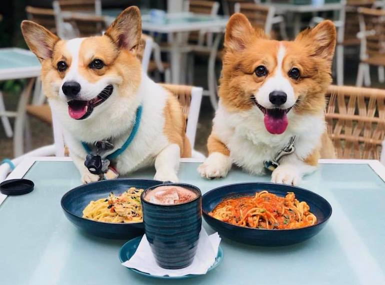 3.     Have a meal together