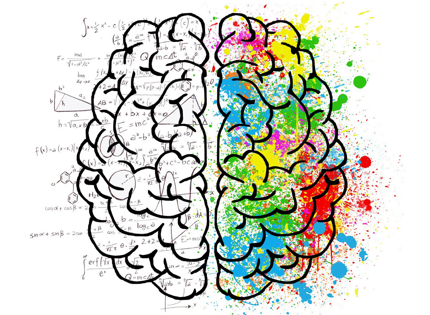 The Power of Your Feeling Brain Over Your Thinking Brain