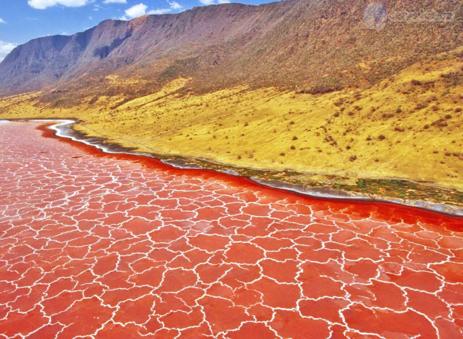 Does the deadly Lake Natron really turn animals into stone?