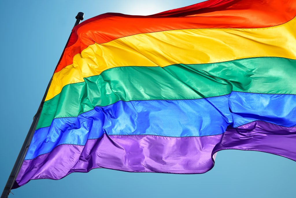 What is the LGBTQ+ Community?