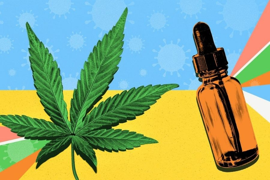 The flavor changes according to the variety of cannabis