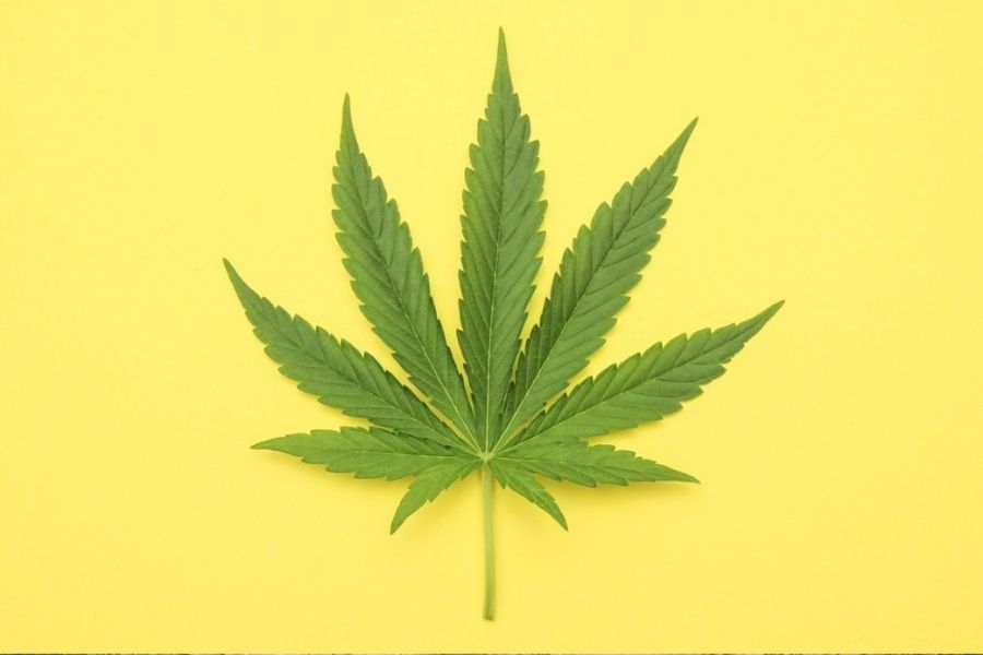 Try cannabis
